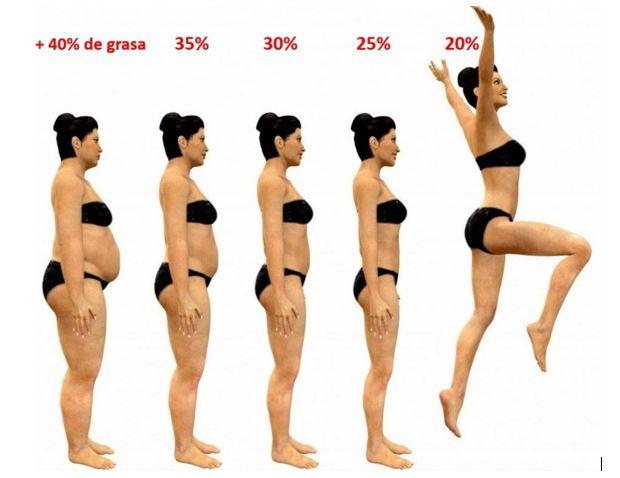 nivel de grasa mujer